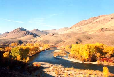 The famous Salmon River in the fall. Photo by Bill Osborn available at Mad Dog Gallery, 208-879-2467.